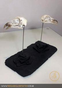 His & Hers Pheasant Skulls on Slate by Lance Vinten for