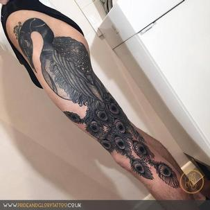 Black work detailed fine linework black Peacock tattoo, by Chessie Clear at Pride & Glory tattoo studio, Leigh-on-sea, Essex, UK.